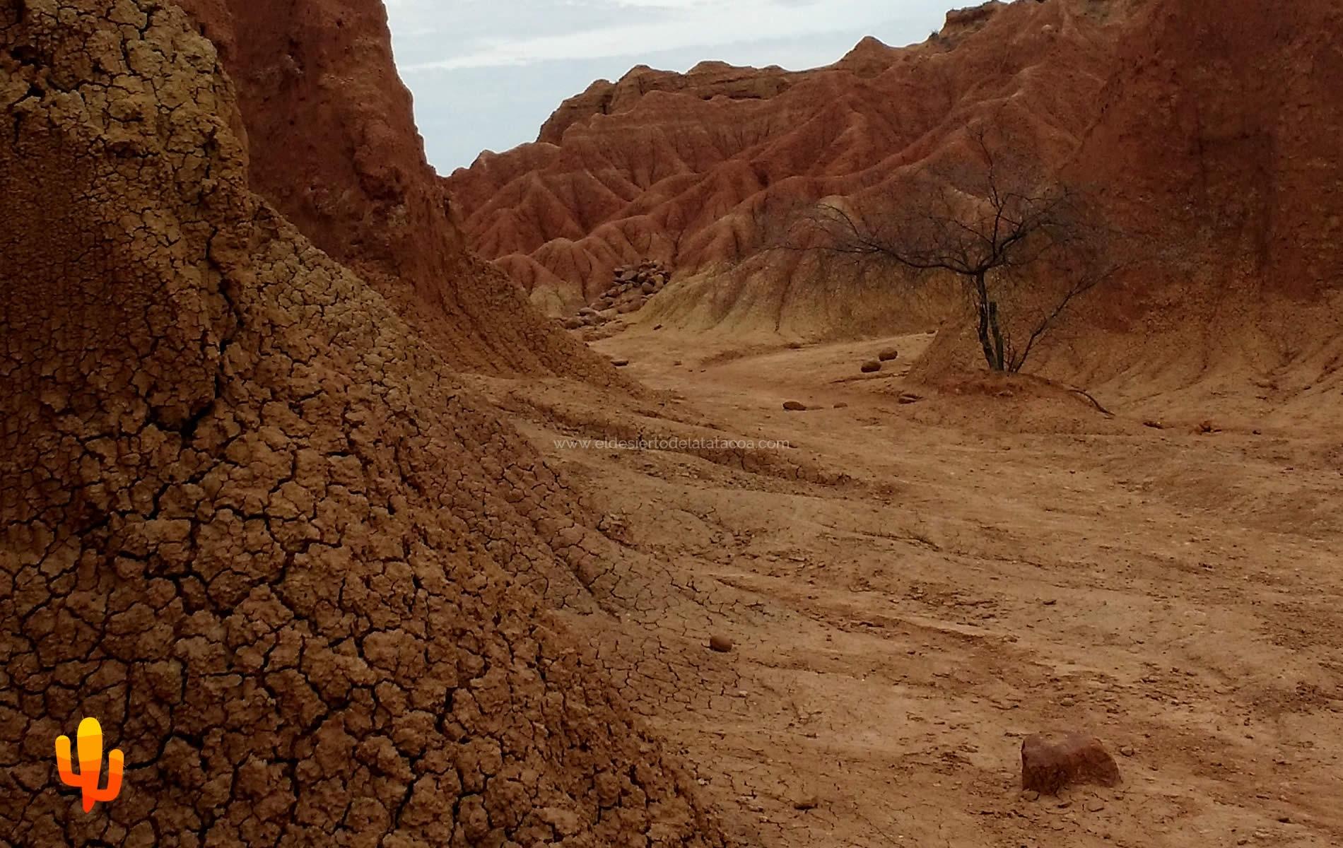 En el Desierto de la Tatacoa la NASA prepara investigación del subsuelo por similitud a Marte